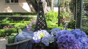 Hydrangeas also bring a wonderful pop of color but they are not as hardy.