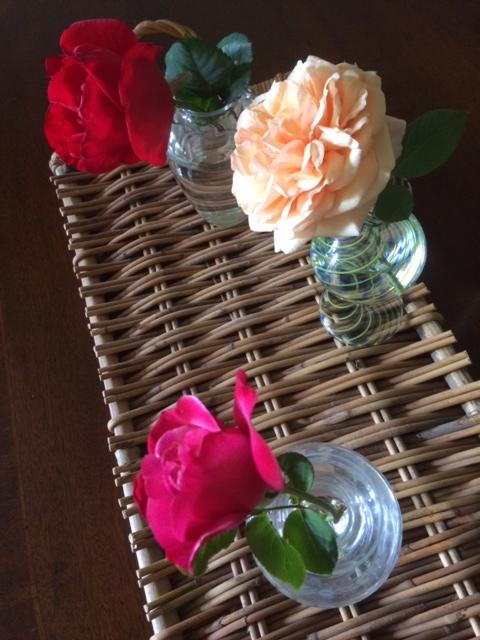 The Season of Roses