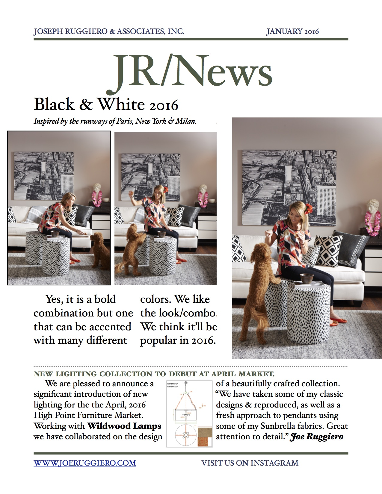 Jan Newsletter 2016